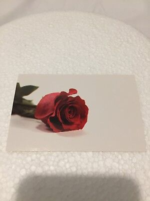20 Florist Message Cards Red Rose Flowers Message Cards Wedding Birthday - Blank