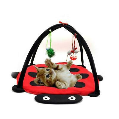 Cat Bed Pet Toys Tree Furniture House Post Scratcher Play Condo Kitten Towe U7U4