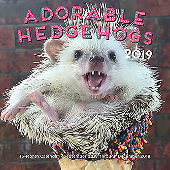 Adorable Hedgehogs Mini 2019 '16-month calendar includes September 2018 through