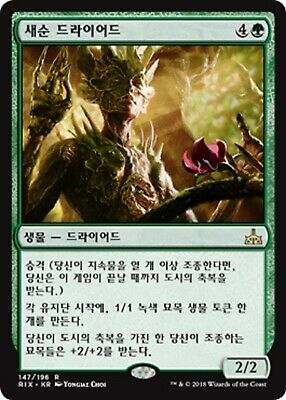 MTG RIVALS OF IXALAN KOREAN - Tendershoot Dryad x1