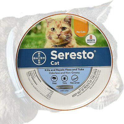 Bayer Seresto Flea and Tick Collar for Cats 7-8 Month Protection Flea Collar