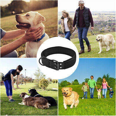 Adjustable Dog Collar with Heavy Metal D-ring Buckle for Medium Dogs Black PS323