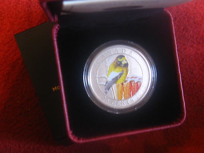 Canada 2012 Evening Grosbeak 25 Cent Over Sized Coloured Coin Rcm Pack.
