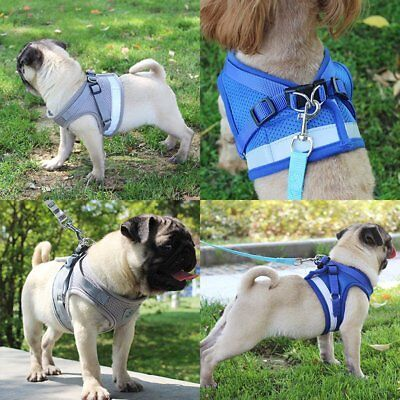 Dog Harness Pet Vest Rope Dog Chest Strap Leash Set Small Pet Collar Leads F4