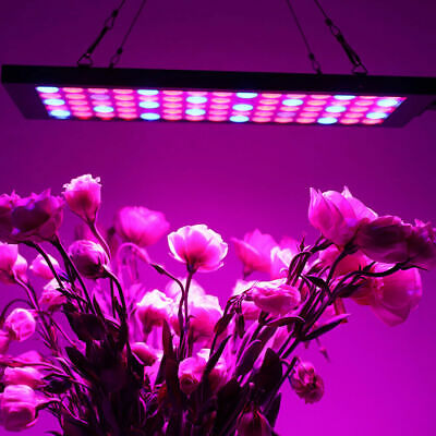 LED Grow Light Lamp 300W Full Spectrum Hydroponic greenhouse Indoor Plant Bloom