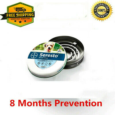 Bayer Seresto Flea & Tick Collar for Small Dog up to 18 Lbs 8 Month Protection