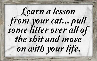 (Lesson From Cat) sign,plaque,gift,animals,poop,learn,kitten,life,wall decor
