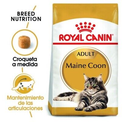 Royal Canin Maine Coon pienso para gato adulto (4 kg)