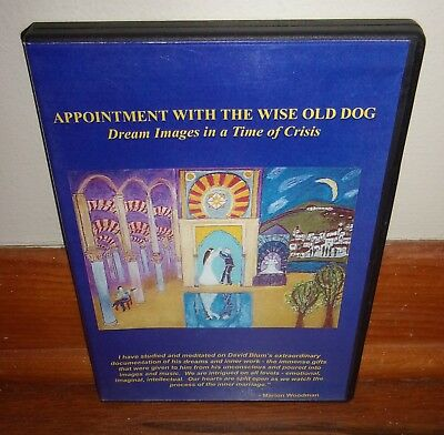 APPOINTMENT WITH THE WISE OLD DOG-Dream Images in a Time of Crisis-SUPERB dvd!