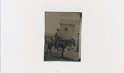 "1860-1870""s Great Rare Tin Type Cowboy May Be Pony Express?"