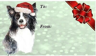 Border Collie Dog Christmas Labels By Starprint - No 7 Design