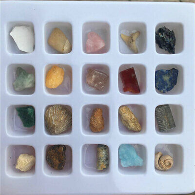 20Pcs Irregular Natural Fossil Ore Crafts Crystal Stone Ornaments Decor in Box