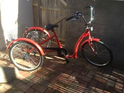 Adult Trike Gomer. Great condition