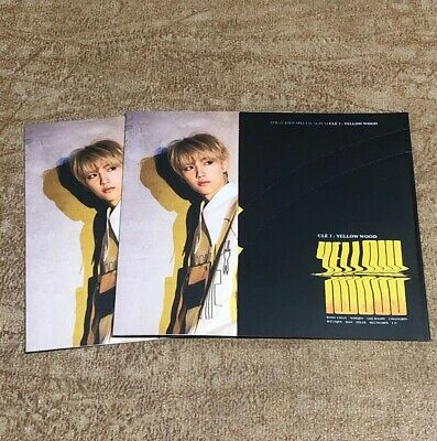 STRAY KIDS Cle 2 Yellow Wood Side Effects Official Photocard Limited Pre order