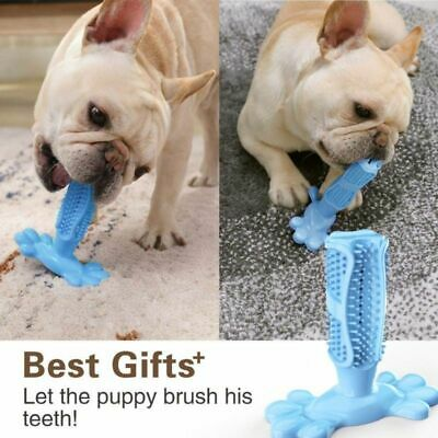 Dog Toothbrush Pet Brushing Stick Teeth Cleaning Chew Toy For Dogs Pet Oral care