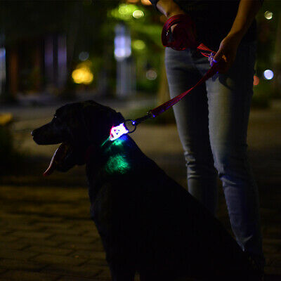 LED Collar Double Padded Handle Nylon Pet Rope Leash for Medium Large Dogs PS278