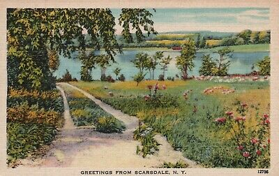Greetings from Scarsdale, NY, Country Road, Linen Vintage Postcard g3718