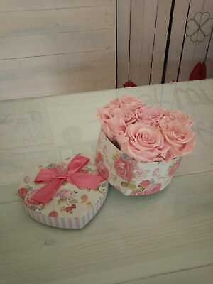 Box con 6 Rose stabilizzate Rose da 6 cm