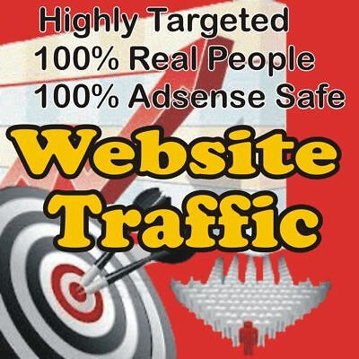 1,000 Real Visitors! HIGHLY TARGETED website traffic! 100% Adsense Safe