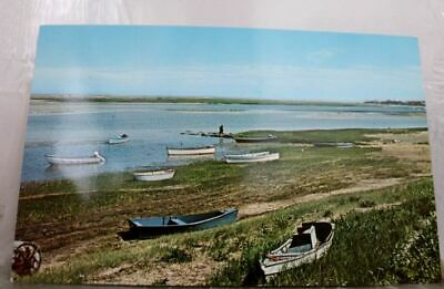 Massachusetts MA North Chatham Cape Cod Postcard Old Vintage Card View Standard