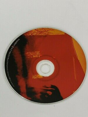 Tragically Hip - Trouble At The Henhouse - Music CD Disc Only - Replacement Disc