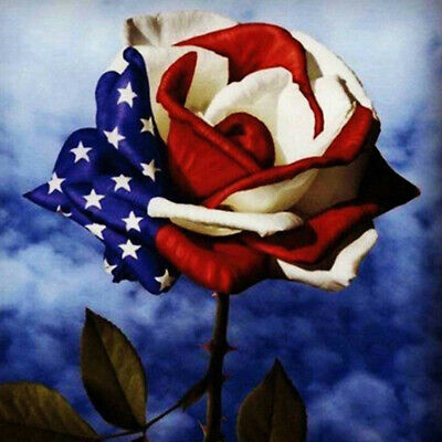 Full Drill Flag Rose 5D Diamond Painting Cross Stitch Embroidery Decor Picture