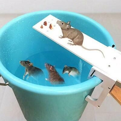 Walk the Plank Mouse Trap Automatic Reset Mice Trap Humane Bucket Rat Traps Rats