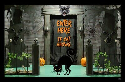 (Halloween Cat) sign, plaque, gift, scary, spider, pumpkins, wall decor
