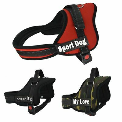 Pets Dog Name Harness Small Leather Medium Big Personalized Reflective Breakaway