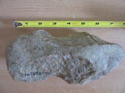 Prehistoric North American Archaeological found hand cut stone Axe head/Tool #3