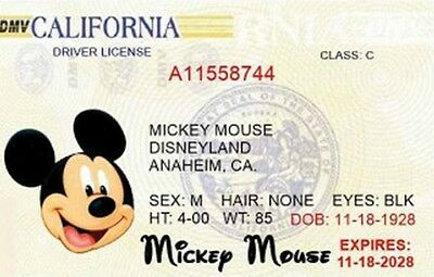 BEST PLAY MONEY Mickey mouse drivers license/ Checks  great