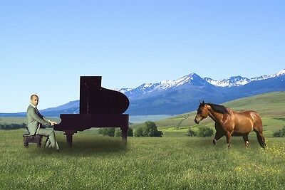 """perfect 36x24 oil painting handpainted on canvas""""pianist,horse,landscape""""@2141"""