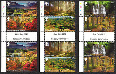2019 FORESTS - Gutter Pairs Set - Mint