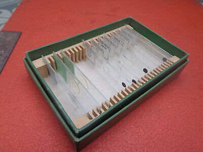 Set of vintage phillip harris prepared microscope slides LOYMSSLB39X