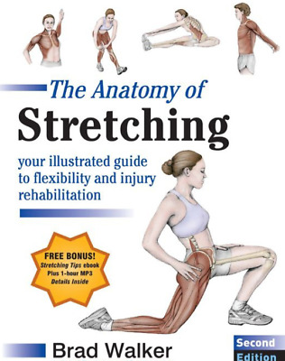 The Anatomy of Stretching 2nd edition Brad walker (PDF)