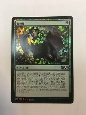 Mtgm20Japan Editionfoil Summer Book Veil Of card good condition from japan 243