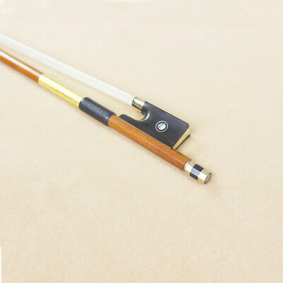 7ct Gold Mounted Professional Pernambuco Violin Bow Genuine High Quality Tone