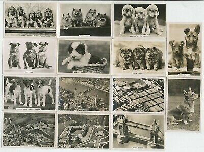 67 Large Cigarette Cards (Photos) c.1930's - All Diff.