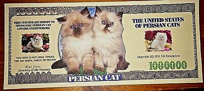 Cats & Kittens Novelty Bank Note Funny Xmas Stocking Filler Gift Lucky Thank You