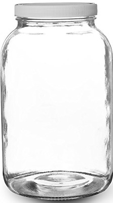 Glass Storage Jars Airtight Container Jar with Lid Large Clear Container Gallon