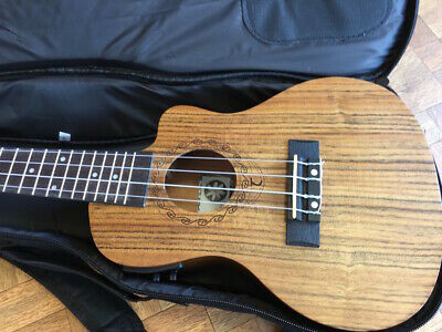 Perfect Concert Electro Acoustic Ukulele,Built In Tuner,New Gig Bag Retail £180