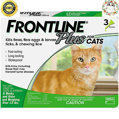 Frontline Plus for Cats and Kittens over 1.5 Ibs Flea and Tick Treatment,3-Doses