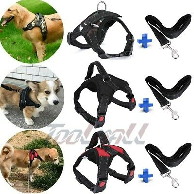 Pet Control Harness for Dog & Cat Soft Mesh Walk Collar Safety Strap Vest + Rope