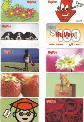 19 Different Older Hyvee Gift Cards   T9-9