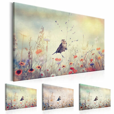 BIRD MEADOW NATURE Canvas Print Framed Wall Art Picture Photo Image g-B-0027-b-b