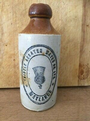 Antique Stoneware Ginger Beer Bottle - Thistle Aerated Water Ltd