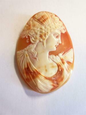 ANTIQUE VICTORIAN LARGE LOOSE CARVED SHELL CAMEO for BROOCH - Greek Goddess!