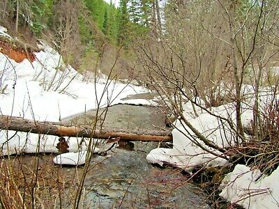 Colorado Gold Mine Prime Mining Taylor Creek Placer Claim Panning Sluice