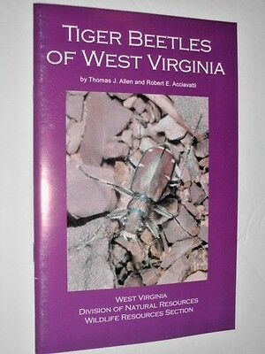 TIGER BEETLES OF WEST VIRGINIA - field guide to the 20 species in color