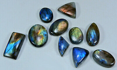 150Cts Natural Multi Purple Labradorite Mix Cabochon Loose Gemstone Lot 10Pcs